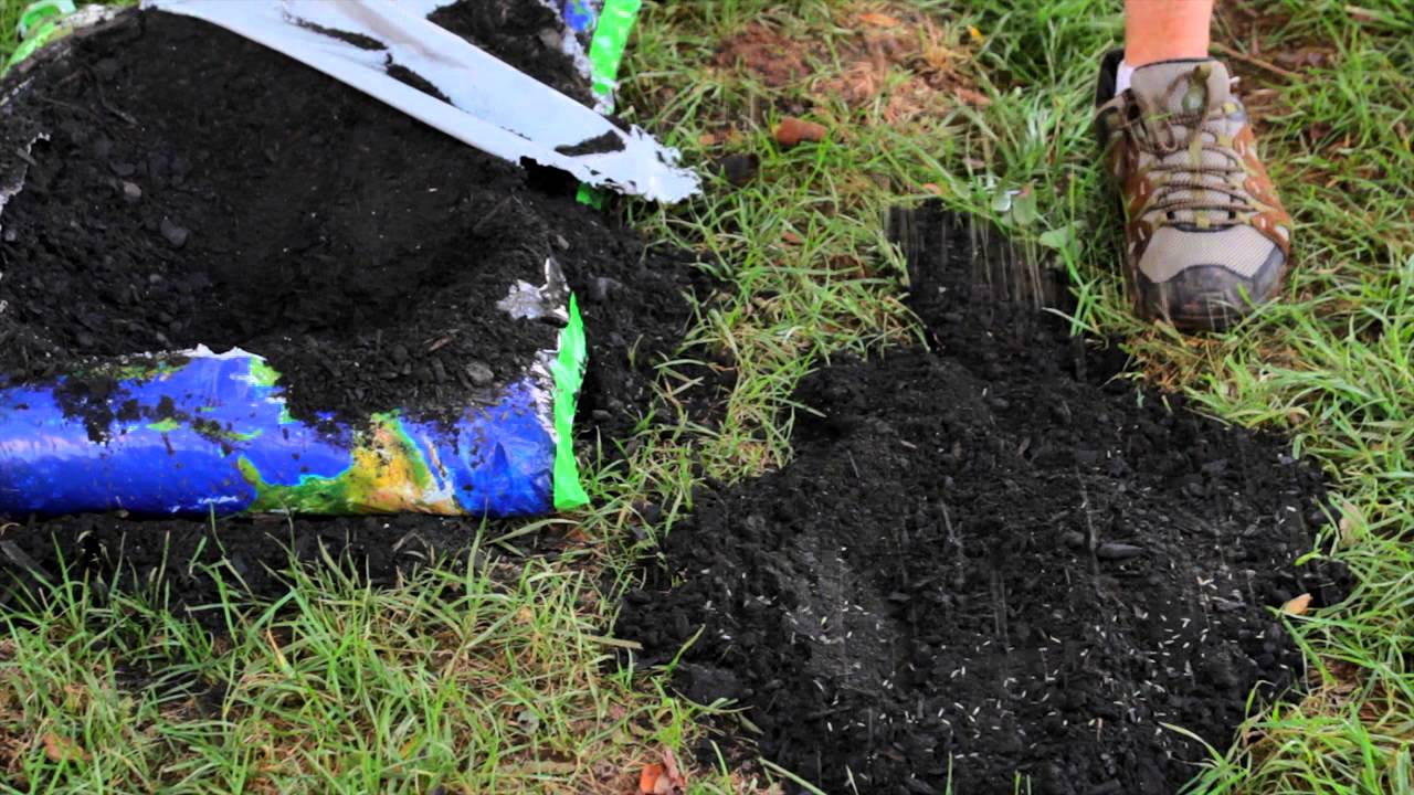 Ordinaire How To Repair Yard Sinkholes : Designed Landscapes   YouTube