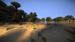 Primul Video !!!