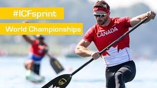 REPLAY : Friday Heats | 2015 ICF Canoe Sprint World Championships | Milan