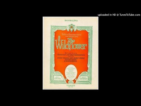 Pygminette Orchester - Bambalina (V. Youmans) - 1925 Foxtrot