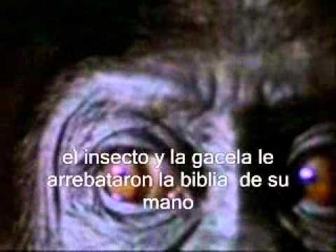Roger Waters - What god wants (traducida al español)