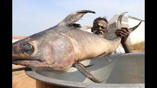 BIG Full FISH Gravy / Village food factory DADDY