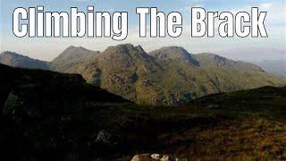 Bagging the Brack via the Cowal Way
