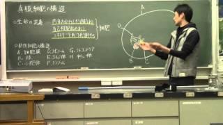 生物&生物基礎 真核細胞の構造