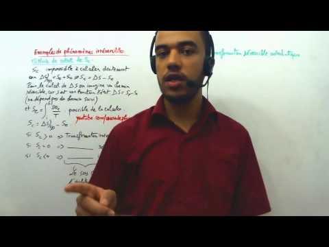 Exemple de phénomène irréversibles, méthode de calcul de l'entropie créée