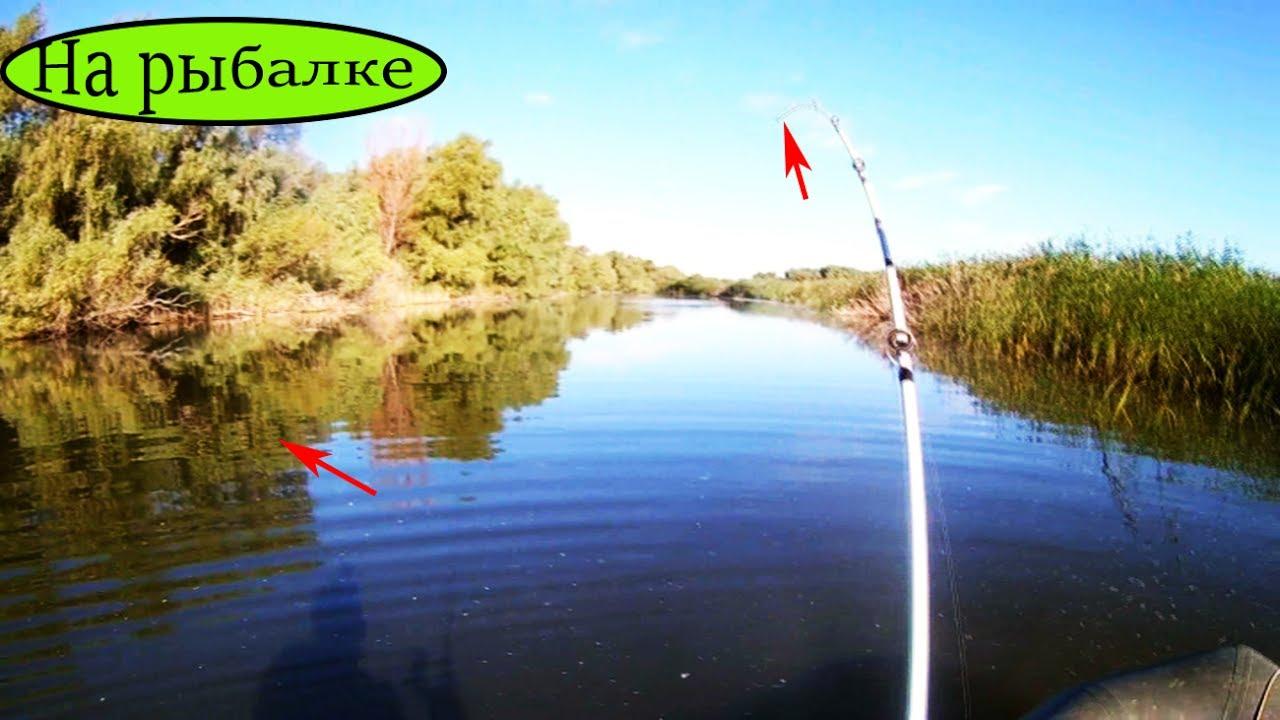 рыбалка летом на поплавочную удочку видео