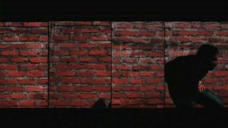 EL PERRO LUIGINAL  video official