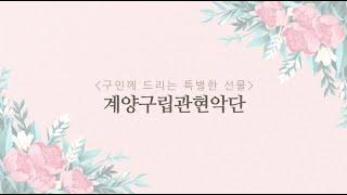 계양구립관현악단 클래식 공연 [하이라이트]썸네일