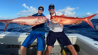 Giant Queen Snapper on TINY rod!!! {Catch Clean Cook} ft. STANZFAM
