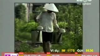 Lang lua lang hoa - Ngoc Khoi