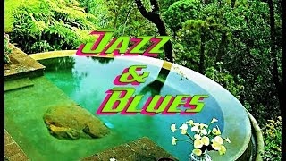 Relaxing Jazz and Blues Music Compilation