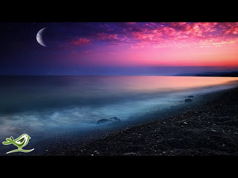 Soothing Sleep Music: Relaxing Harp Music, Sleeping, Calming, Fall Asleep, 8 Hours Instrumental ★67