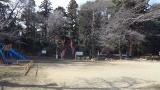 20150207.円福寺、十二所神社