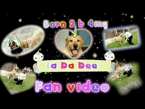 'Unicorns!' VS MVC*la da dee*born 2 b 4my*featuring my dog xx FEATURED!!!!
