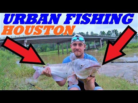 FISHING HOUSTON CITY | 2 BIG BLUE CATFISH | FISHING URBAN CREEK AND BAYOU
