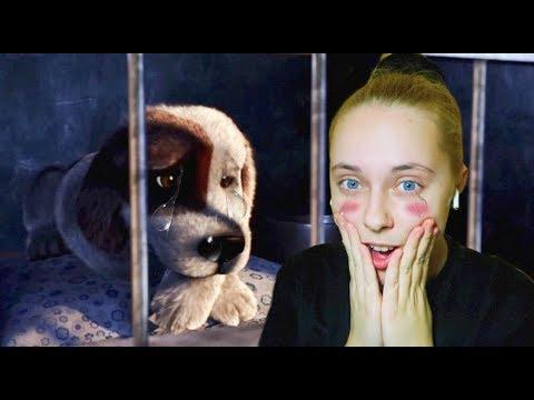 Про кошку и собаку мультфильм