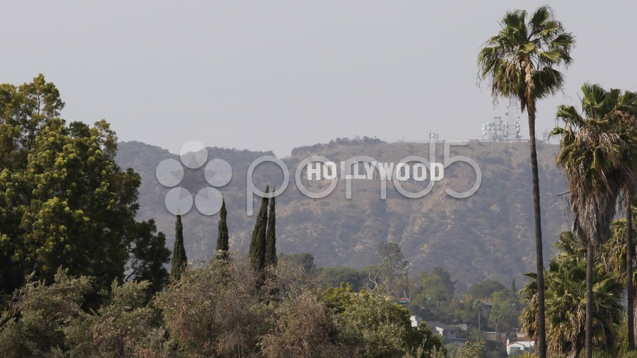 Hollywood Sign Los Angeles Hills Valley Palm Trees Vacation Holidays Sunny Day Stock Footage