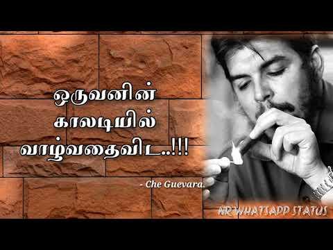 03 - Che Guevera Tamil quotes / Motivation status / Tamil WhatsApp Status video...