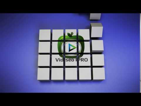VIDSEOPRO.NET We Create Successful Mobile Video Optimized Ads