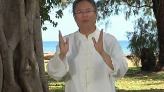 Dr. and Master Sha: Soul Healing for Knees, Kauai, Hawaii