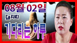 2020년 08월02일 오늘의 운세 돼지띠 소식을 기다리는 하루 선미 보살 010-4354-7730 서울 용…