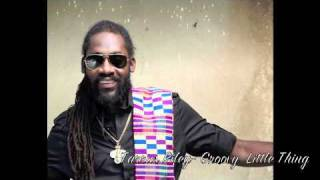 Tarrus Riley- Groovy Little Thing
