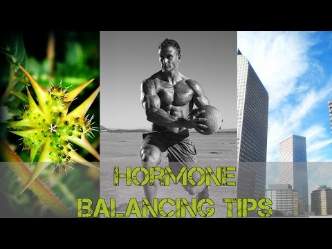 Testosterone: 3 Ways to Balance Hormones- Thomas DeLauer