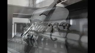 Canon - Pachelbel (Flute, Cello & Piano) Resimi
