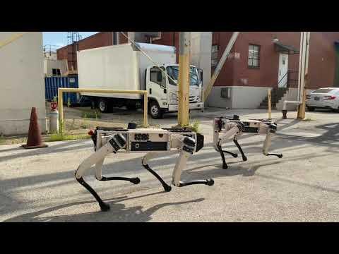 科幻电影画面成真?美军士兵带着机器狗巡逻保卫机场(组图/视频)