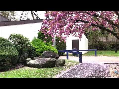 Vincent Smith School Campus Tour