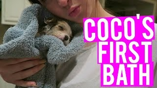 PUPPY'S FIRST BATH   Vlogmas Day 23