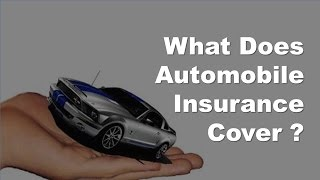 Vehicle Insurance Basics -  What Does Automobile Insurance Cover