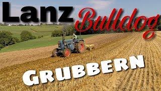Lanz Bulldog Grubbern [D6516]