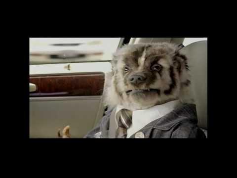 Badger Car Dealer Commercials