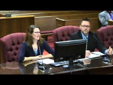 Spotsylvania Planning Commission 0