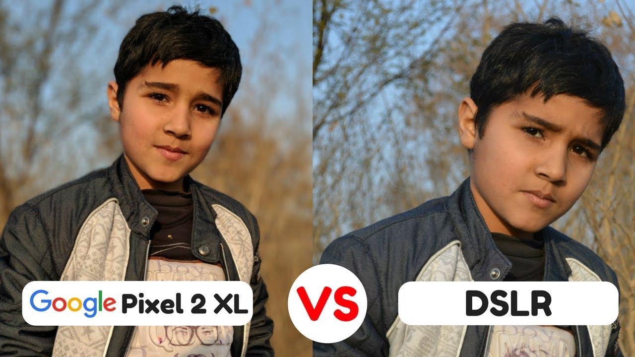 Google Pixel 2 Xl Camera Vs Dslr Camera Portrait Mode