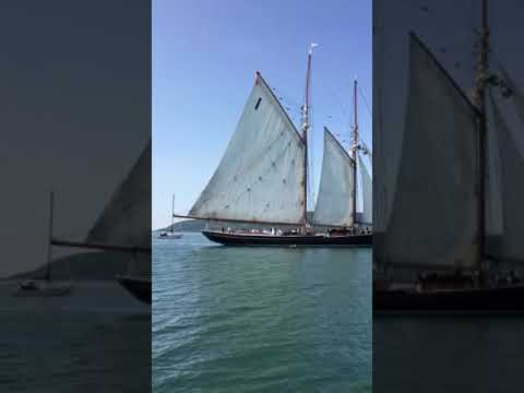 The Bluenose II sails by
