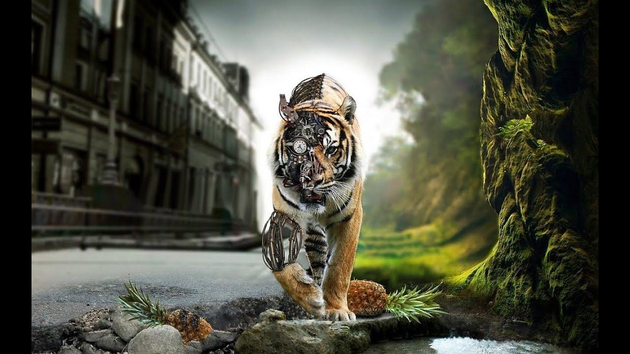Fantasy Tiger Hd Desktop Wallpapers Widescreen High: 10 Robotic Animals