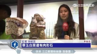 Gambar cover 故宮首次解禁!遊客搶拍「翠玉白菜」|三立新聞台