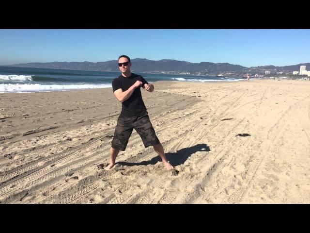 Wing Chun 3rd form Venice Beach