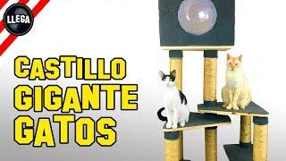 CÓMO HACER UN CASTILLO o GIMNASIO PARA GATOS GIGANTE !!!