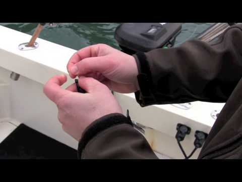 Rigging A Choked Herring For Salmon