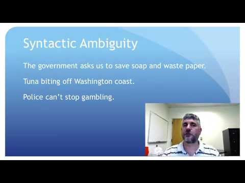 Semantic and Syntactic Ambiguity