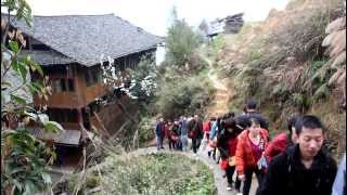 CHINA: Guǎngxī - Lóngshèng Rice Terraces (龙胜梯田9