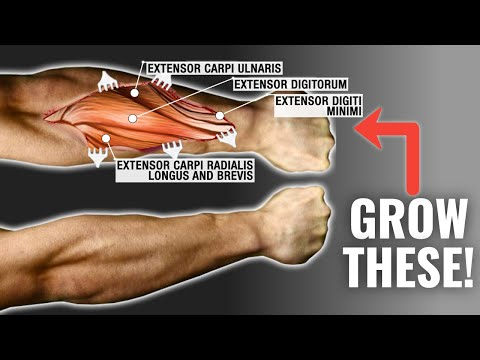 How To Get Bigger Forearms FAST (3 Science-Based Tips)
