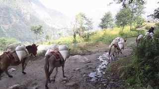 Khandbari to Jiri hike