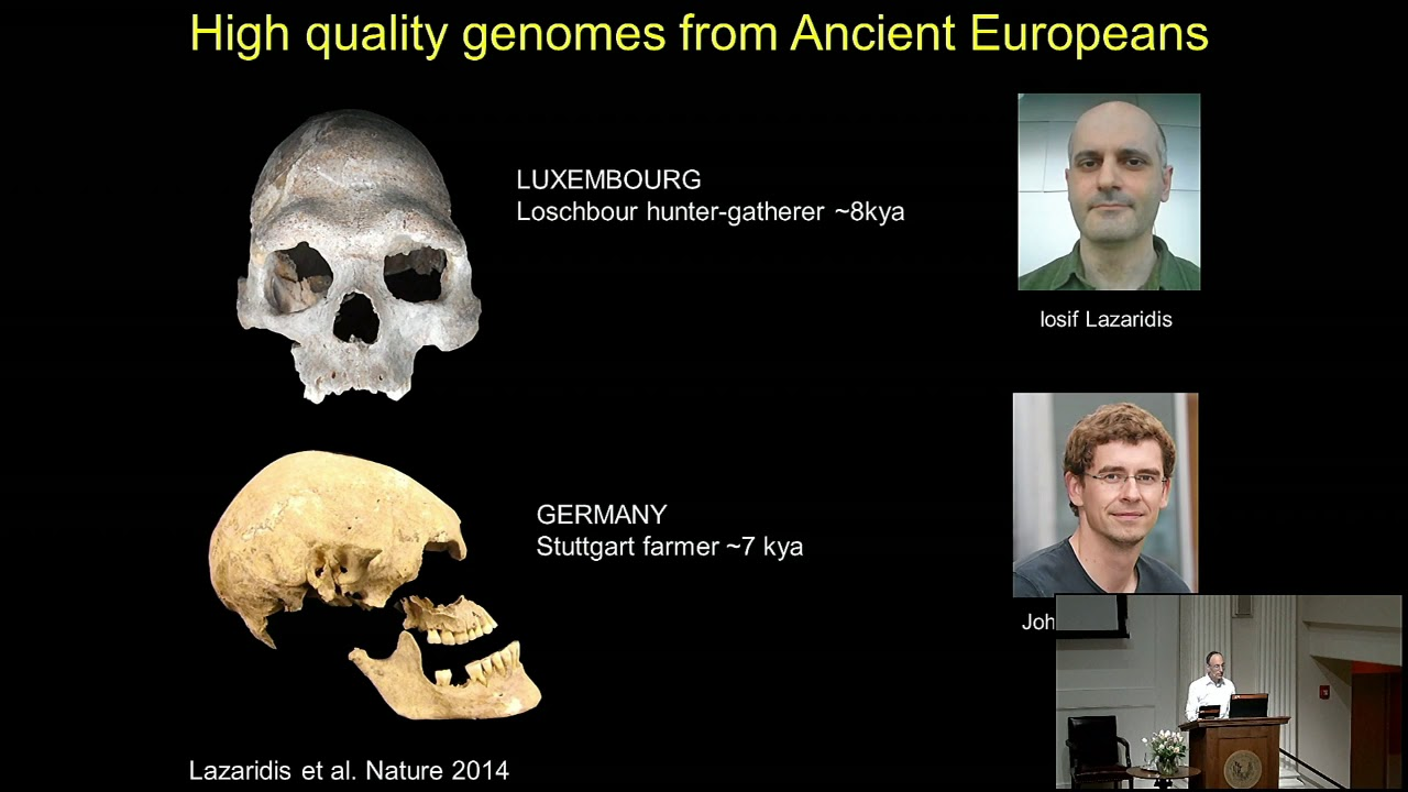 Ancient Dna Suggests Steppe Migrations Spread Indo European Languages Youtube