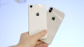 iPhone Xr vs iPнone Xs / Xs Max - Was lohnt sich mehr zu kaufen?
