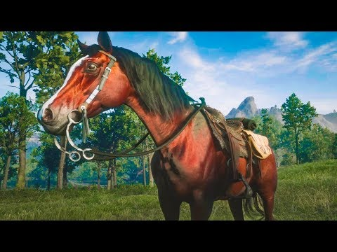 HOW TO GET RED ARABIAN HORSE in Red Dead Redemption 2 Online