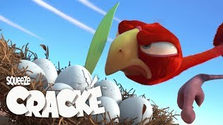 CRACKE - PLANT PROBLEMS | Best Compilations | Videos For Kids | by Squeeze
